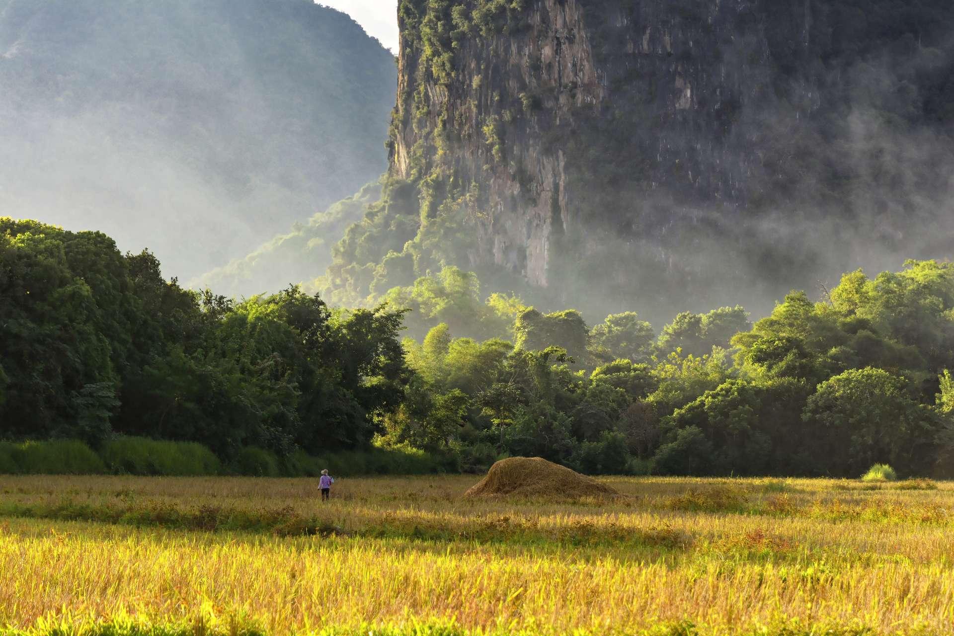 2020-10-kambodscha-laos_munding-diashows_020