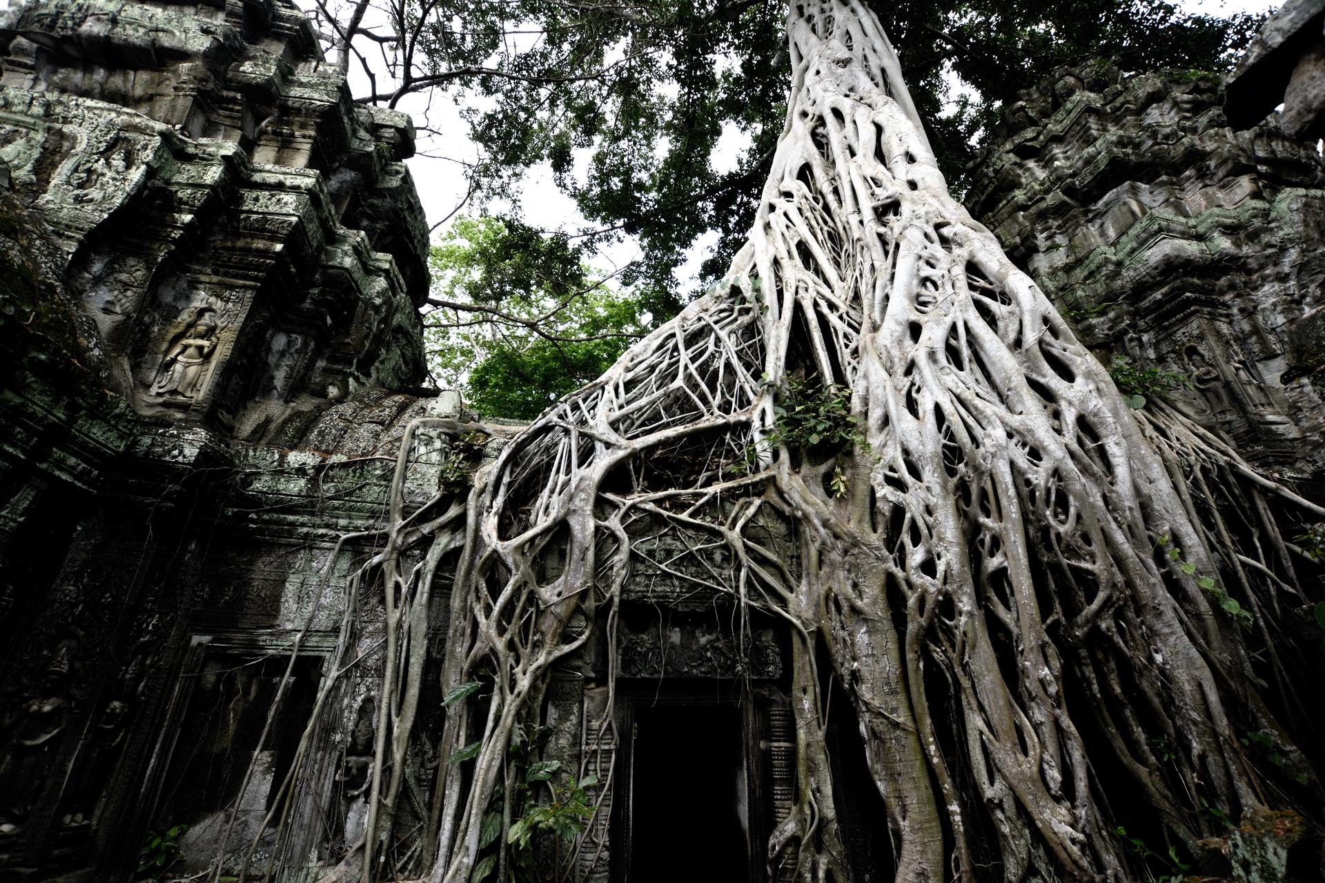 2020-10-kambodscha-laos_munding-diashows_035