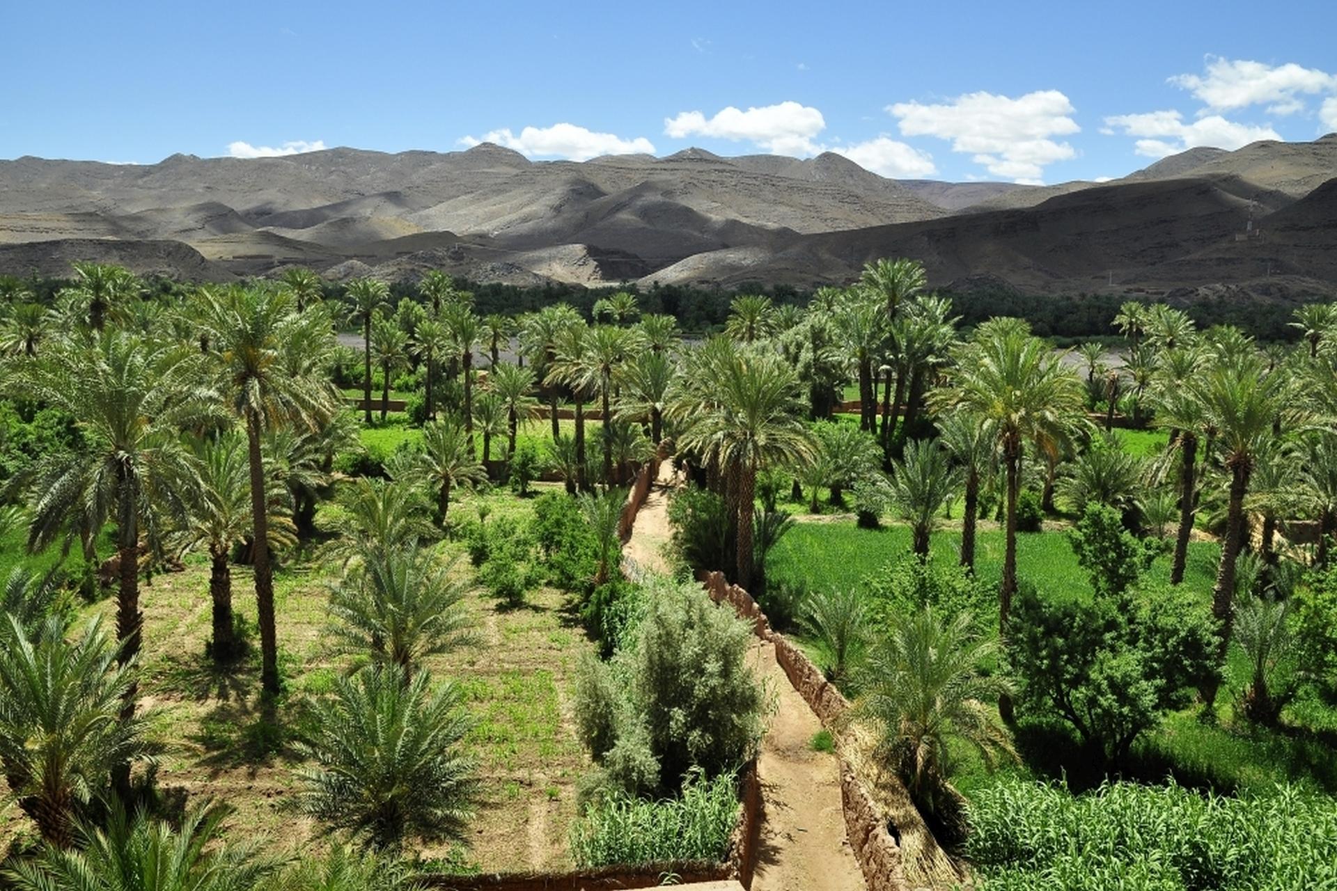 2013-10-marokko_munding-diashows_001