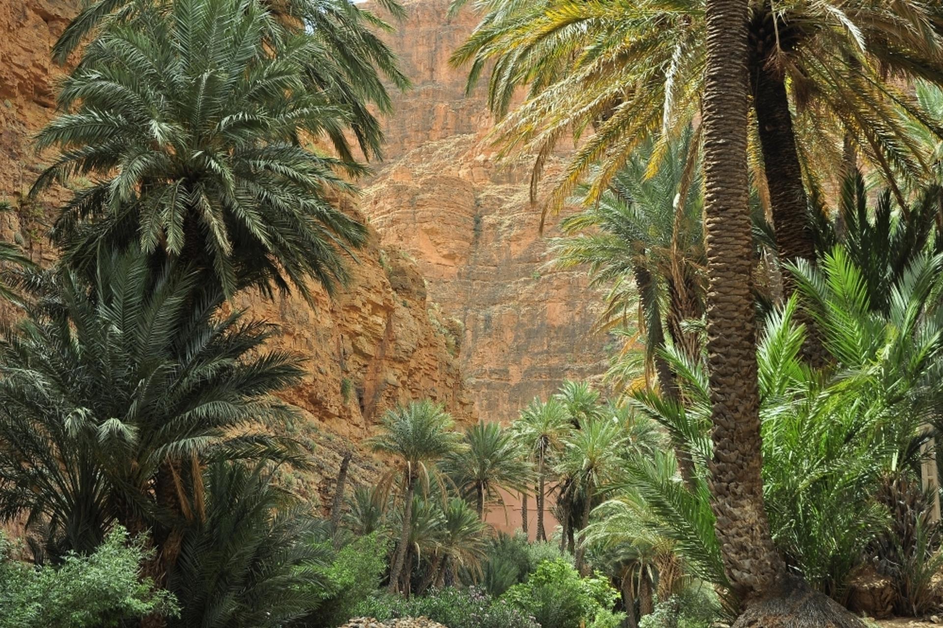 2013-10-marokko_munding-diashows_006