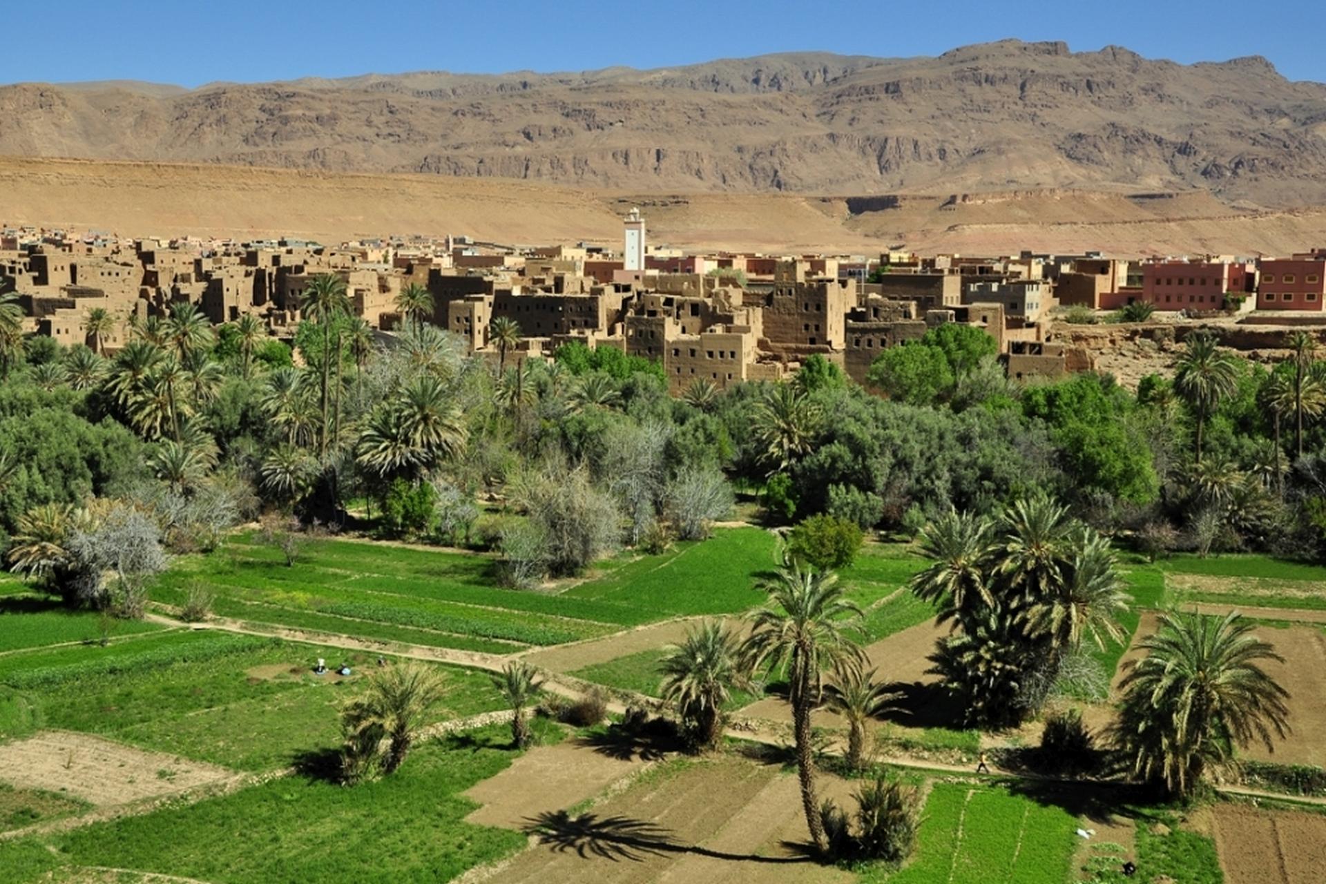2013-10-marokko_munding-diashows_039